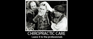 Chiropractic Training